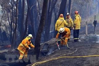 Australia: Nắng nóng kỷ lục đe dọa cháy rừng và mất điện diện rộng