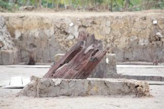 """Phát hiện bãi cọc gỗ dưới lòng đất Hải Phòng, """"điểm mới"""" về trận Bạch Đằng"""