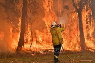 Australia tiếp tục chiến đấu với cháy rừng trong dịp lễ Giáng sinh
