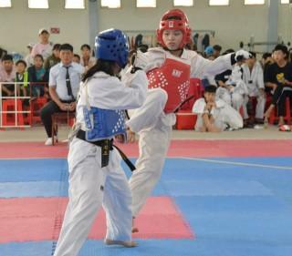 Taekwondo gặt hái nhiều thành công