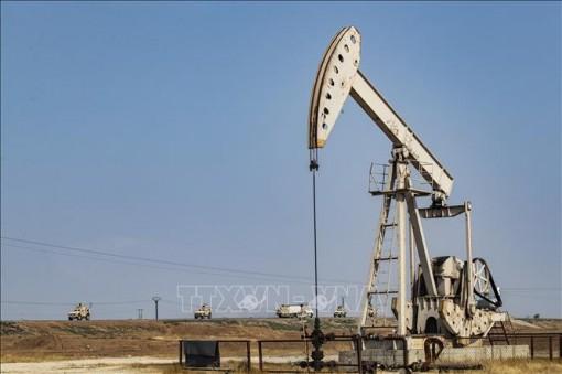 Giá dầu mỏ toàn cầu năm 2020 đứng trước nguy cơ sụt giảm