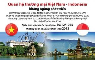 Quan hệ Việt Nam-Indonesia dựa trên những nền tảng vững chắc