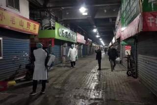 Trung Quốc điều tra nghi vấn virus SARS 2.0