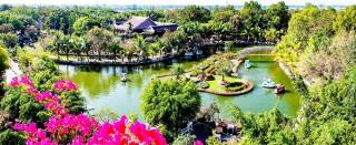 Vui Tết Canh Tý 2020 tại Khu du lịch Vạn Hương Mai