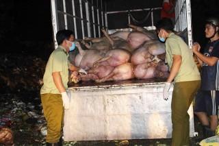Nhiều vụ vận chuyển hàng hóa trái phép bị phát hiện