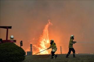 Australia điều 3.000 binh sĩ thuộc lực lượng dự bị ứng phó với cháy rừng