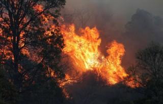 Australia huy động tàu hải quân sơ tán người dân khỏi hỏa hoạn