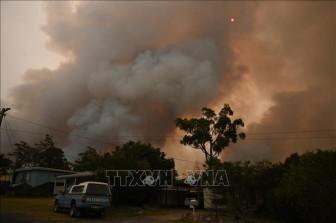 Khói mù phủ kín New Zealand do ảnh hưởng cháy rừng ở Australia