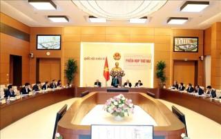 Tổng kết 15 năm triển khai Chiến lược xây dựng và hoàn thiện hệ thống pháp luật