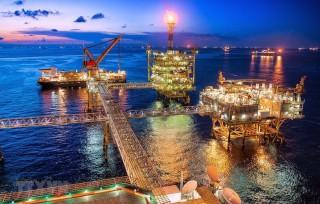 Nhận định giá dầu thô thế giới năm 2020: Nhiều rủi ro bất định
