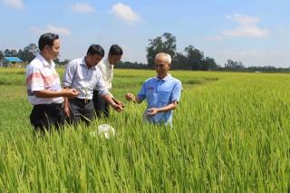 Phát triển Tân Châu trở thành vùng kinh tế trọng điểm của tỉnh
