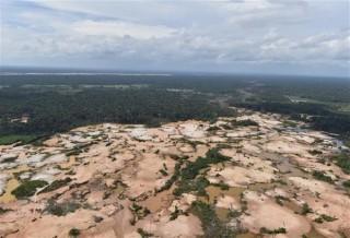 Liên hợp quốc công bố kế hoạch cứu hệ sinh thái vào năm 2030