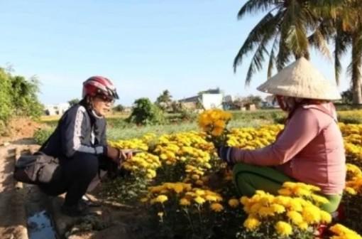 Thăm làng hoa Tết ở Mỹ Bình