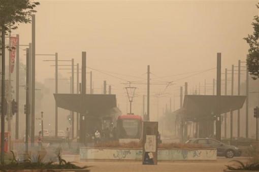 Australia chi 52 triệu USD hỗ trợ du lịch khôi phục sau cháy rừng