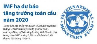 IMF hạ dự báo tăng trưởng toàn cầu năm 2020