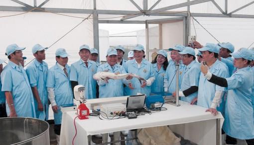Thị xã Tân Châu 10 năm hình thành và phát triển