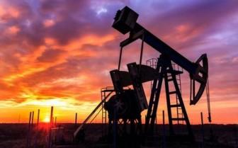 Giá xăng dầu hôm nay 28-1