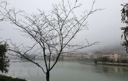 Bắc Bộ và Bắc Trung Bộ mưa rét, rét đậm trong ngày mùng 4 Tết
