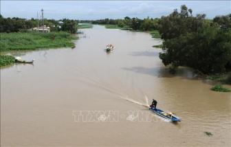 Từ ngày 11 đến 15-2, xuất hiện xâm nhập mặn cao nhất trên sông Cửu Long