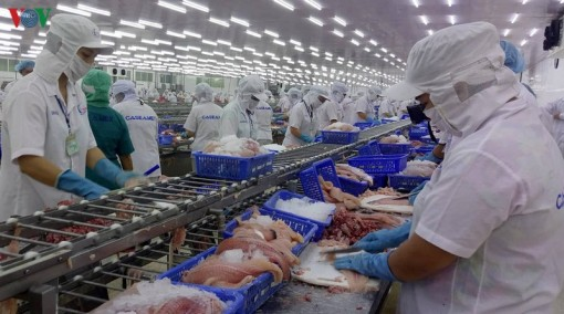 Ứng phó dịch nCoV: Tìm thị trường mới, cách làm mới cho nông sản