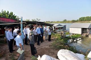 Phó Chủ tịch UBND tỉnh An Giang Trần Anh Thư khảo sát tình hình sạt lở tại các địa phương