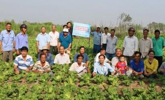 Châu Thành: Đẩy mạnh chuyển giao khoa học - kỹ thuật cho nông dân