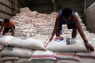 Philippines dự kiến vẫn là nước nhập khẩu gạo lớn nhất thế giới