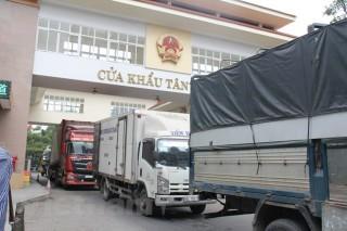 Khuyến cáo doanh nghiệp sớm chuyển đổi sang xuất khẩu chính ngạch