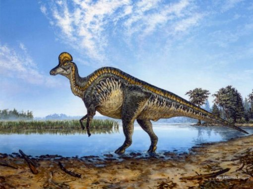 Phát hiện bệnh hiếm ở trẻ em trong khối u khủng long hóa thạch