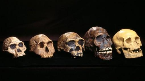 Phát hiện gen 'bí ẩn' trong ADN người Tây Phi