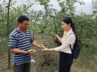 Thẩm định xét công nhận nông thôn mới nâng cao xã Vĩnh Trạch và Thoại Giang