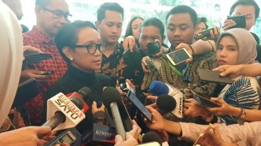 3 người Indonesia nhiễm Covid-19 trên du thuyền Diamond Princess