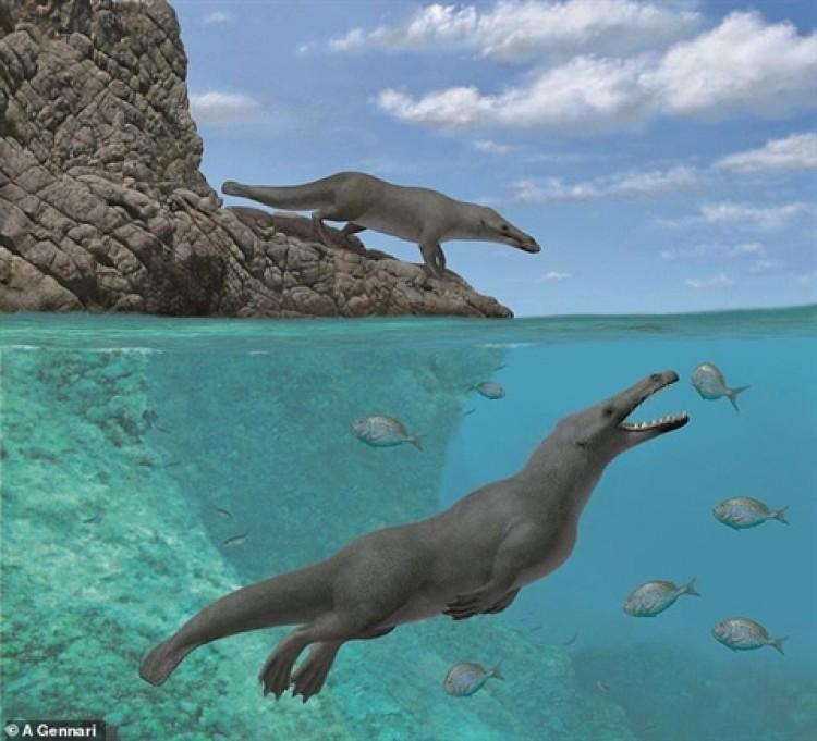 Phát hiện loài cá voi có bốn chân cực kỳ lạ