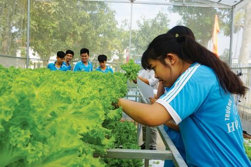 Phú Tân: Nhân rộng mô hình trồng rau nhà lưới ở các trường THPT