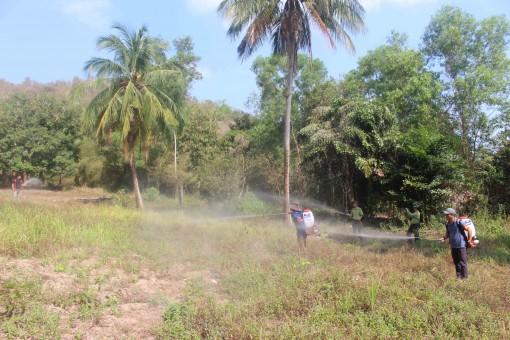 Tập trung phòng, chống cháy rừng mùa khô