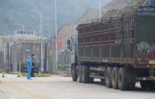 Dịch COVID-19: Tháo gỡ khó khăn hoạt động xuất nhập khẩu tại cửa khẩu