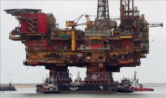 Giá dầu Mỹ rơi xuống mức thấp nhất của 18 năm