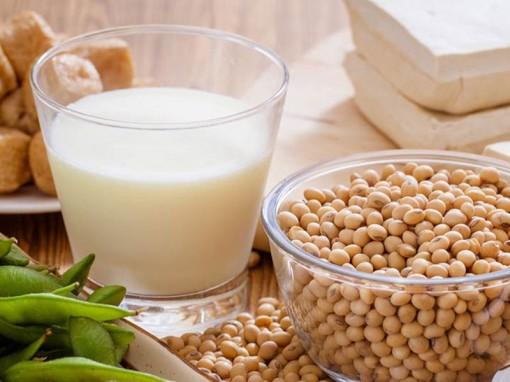 Protein có trong đậu nành tốt hay xấu cho cơ thể?