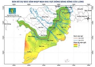 Xâm nhập mặn ở vựa lúa số 1 Việt Nam có thể tăng trong tuần tới
