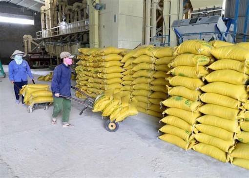 Đảm bảo đủ tiêu dùng trong nước và xuất khẩu trên 6,5 triệu tấn gạo