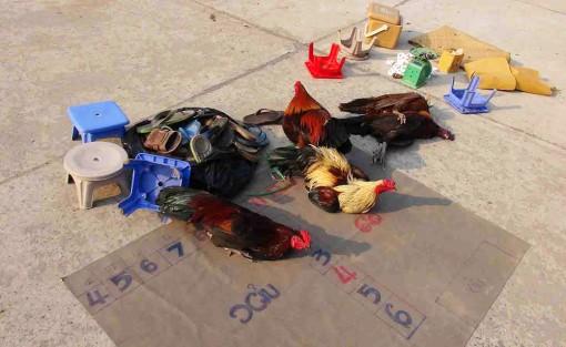 Công an TX. Tân Châu triệt phá tụ điểm đá gà, lắc tài xỉu