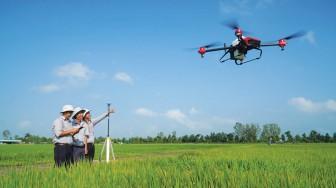 Liên kết sản xuất, hỗ trợ tiêu thụ nông sản