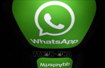 WHO ra mắt chatbot chống tin giả trên WhatsApp