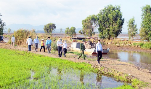 Thăm, kiểm tra các chốt phòng, chống dịch Covid-19 trên biên giới huyện Tịnh Biên