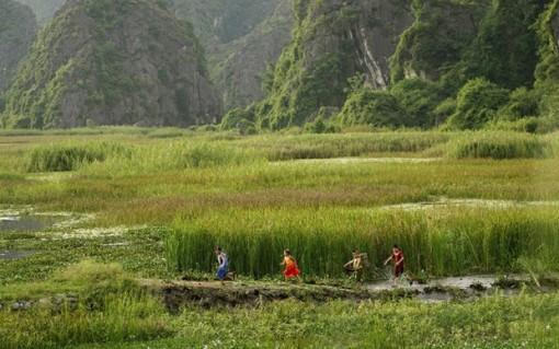 Điện ảnh Việt ''chao đảo'' vì COVID-19 trong những tháng đầu năm