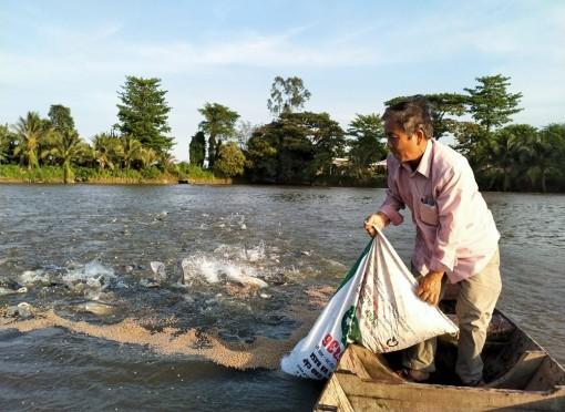 Giảm thiểu rủi ro của ngành hàng cá tra