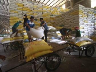 Bộ Công Thương sẽ thực hiện nghiêm quản lý xuất khẩu gạo qua các cửa khẩu quốc tế