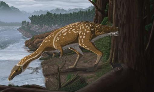 Phát hiện hóa thạch khủng long cổ dài cực hiếm ở Úc