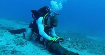 Khắc phục sự cố đứt tuyến cáp biển AAG vào đầu tháng 6