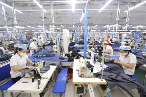 EVFTA đóng vai trò như thế nào trong việc giúp hồi phục nền kinh tế Việt Nam?